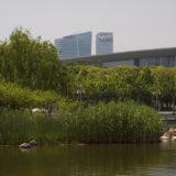 Northwest Corner of Bright Lake, Century Park, Shanghai, China, May 6, 2009 | © Courtesy of Jonathan/Flickr.